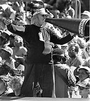 Oakland Raider fan...(1981 photo/Ron Riesterer)