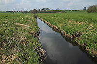 Begradigter Bach, Begradigung, Bachbegradigung, Flussbegradigung, Naturzerstörung. Straightening, straightened river, stream, regulated river
