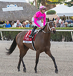 January 25, 2020: #1 Zulu Alpha with jockey Tyler Gaffalione  returns from the race after winning the Pegasus World Cup Turf Invitational GI during the Pegasus World Cup Invitational at Gulfstream Park Race Track in Hallandale Beach, Florida. Liz Lamont/Eclipse Sportswire/CSM