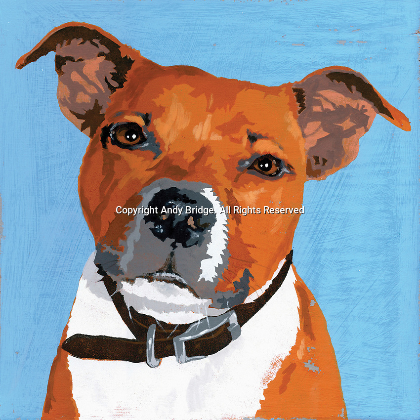 Painting of Pit Bull Terrier dog
