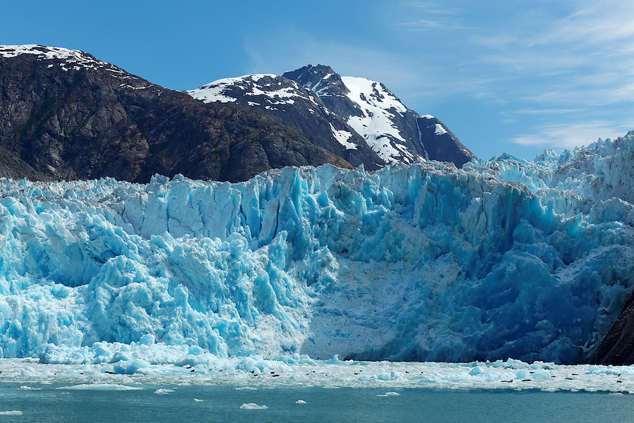 Icebergs floating below terminus face of South Sawyer Glacier, Tracy Arm, Southeast Alaska, USA