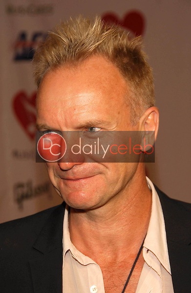 Sting<br />at the 2006 MusiCares Person of the Year Gala. Los Angeles Convention Center, Los Angeles, CA 02-06-06<br />Dave Edwards/DailyCeleb.com 818-249-4998