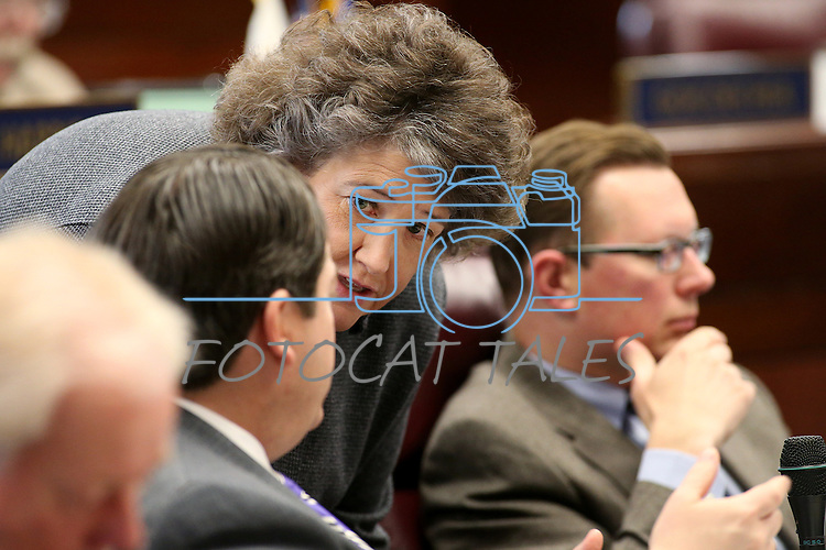 Nevada Legislative Counsel Brenda Erdoes talks to Senate Majority Leader Michael Roberson, R-Henderson, on the Senate floor at the Legislative Building in Carson City, Nev., on Tuesday, April 7, 2015. <br /> Photo by Cathleen Allison