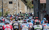 peloton twisting through the narrow village streets<br /> <br /> Stage 6: Le parc des oiseaux/Villars-Les-Dombes &rsaquo; La Motte-Servolex (147km)<br /> 69th Crit&eacute;rium du Dauphin&eacute; 2017