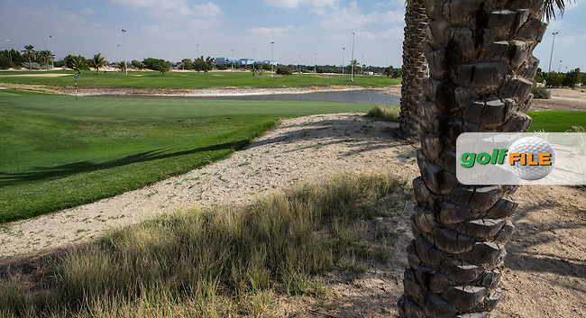 3rd green, The Track at The Meydan Golf Club, Dubai, United Arab Emirates.  31/01/2016. Picture: Golffile | David Lloyd<br /> <br /> All photos usage must carry mandatory copyright credit (&copy; Golffile | David Lloyd)
