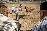 Winnemucca's Tri County Fair, Labor Day weekend