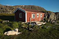 Bruvollstua i Syltevika ved Syltefjorden på Varangerhalvøya. Norges østligste turistforeningshytte.  ---- Bruvollstua in Syltevika.