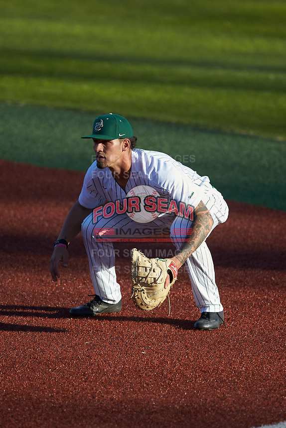 Charlotte 49ers first baseman Dominick Cammarata (24) on defense against the Marshall Thundering Herd at Hayes Stadium on March 22, 2019 in Charlotte, North Carolina. The Thundering Herd defeated the 49ers 12-6. (Brian Westerholt/Four Seam Images)