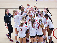 STANFORD, CA - November 4, 2018: Team at Maples Pavilion. No. 2 Stanford Cardinal defeated the Utah Utes 3-0.