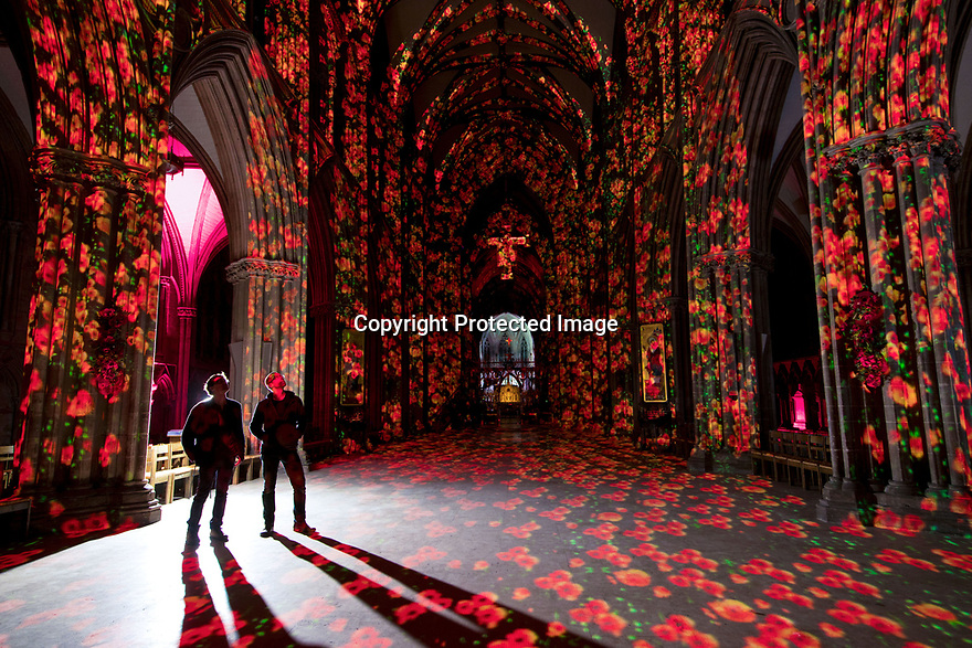 10/11/18<br /> <br /> Standing in the nave, Luxmurualis artists, David Harper and Peter Walker inspect their projected display known as Poppy Fields, inside Lichfield Cathedral, Staffordshire.<br /> <br /> All Rights Reserved, F Stop Press Ltd. (0)1335 344240 +44 (0)7765 242650  www.fstoppress.com rod@fstoppress.com