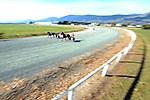 2014 Nelson Harness Races Winter Cup Festival. Richmond Racetrack, Richmond, Nelson, New Zealand. Friday 6 June 2014. Photo: Chris Symes/www.shuttersport.co.nz