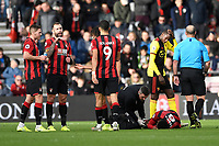 Injury concern for Jefferson Lerma of Bournemouth during AFC Bournemouth vs Watford, Premier League Football at the Vitality Stadium on 12th January 2020
