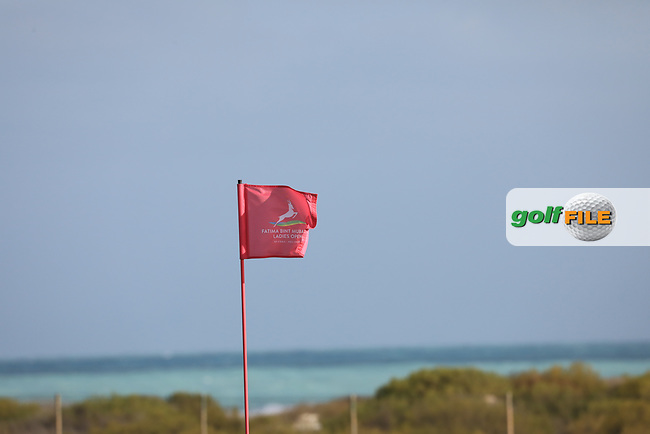Pinflag on the16th during the second round of the Fatima Bint Mubarak Ladies Open played at Saadiyat Beach Golf Club, Abu Dhabi, UAE. 11/01/2019<br /> Picture: Golffile | Phil Inglis<br /> <br /> All photo usage must carry mandatory copyright credit (&copy; Golffile | Phil Inglis)