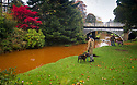15/10/18<br /> <br /> Complimenting the stunning autumnal colours in Pavilion Gardens, Buxton, Derbyshire, the river Wye has turn a vivid orange colour. <br /> <br /> The rare phenomenon, is explained on the 'Explore Buxton' website: &quot;After periods of heavy rain the river flowing through the town often turns a striking orange colour. This is caused when the river level raises and flows through iron bearing strata from the remains of coal mining workings in Burbage&quot;<br /> <br /> <br /> All Rights Reserved, F Stop Press Ltd. (0)1335 344240 +44 (0)7765 242650  www.fstoppress.com rod@fstoppress.com