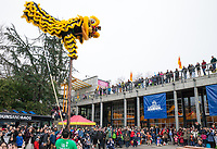 Lion Dance, Tet In Seattle,  Vietnamese New Year Festival 2019, Seattle Center, WA, USA.