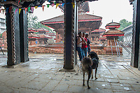 Nepal, Kathmandu, earthquake damage at Kathmandu Durbar Square. Pouring monsoon rain.