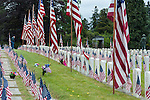 Memorial Day Ceremony at cemetary with American Flags at grave sites with man visiting grave stone