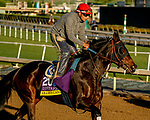 October 26, 2019 : Breeders' Cup Distaff entrant Ollie's Candy, trained by John W. Sadler, exercises in preparation for the Breeders' Cup World Championships at Santa Anita Park in Arcadia, California on October 26, 2019. Scott Serio/Eclipse Sportswire/Breeders' Cup/CSM