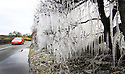 22/02/13  ..As the country is gripped by plummeting temperatures, a car passes giant icicles formed in a hedgerow beside a road near Mayfield in Staffordshire....All Rights Reserved - F Stop Press.  www.fstoppress.com. Tel: +44 (0)1335 300098.