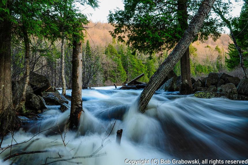 Raquette River, Buttermilk Falls Area, Adirondack Forest Preserve, New York