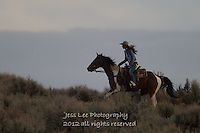 Run Cowboys working and playing. Cowboy Cowboy Photo Cowboy, Cowboy and Cowgirl photographs of western ranches working with horses and cattle by western cowboy photographer Jess Lee. Photographing ranches big and small in Wyoming,Montana,Idaho,Oregon,Colorado,Nevada,Arizona,Utah,New Mexico.