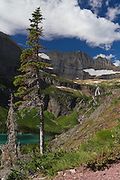 Grinnell Glacier Trail. View of Salamander Falls, Salamander Glacier and Gem Glacier located in Glacier National Park, Montana.
