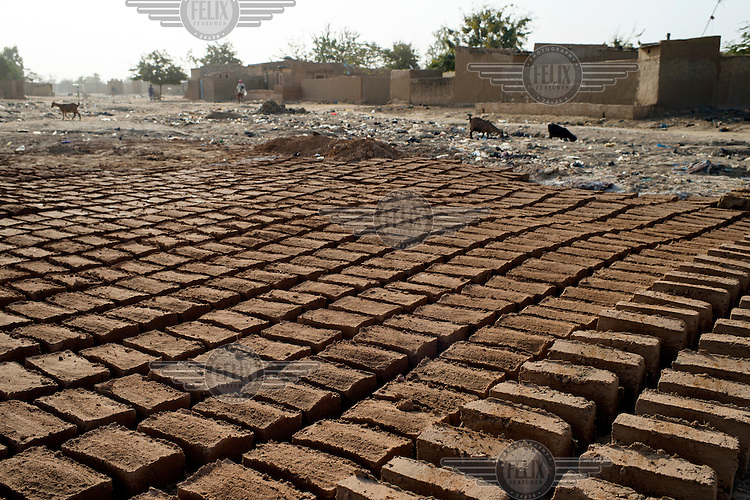 Mud bricks of the type used in latrine construction in the informal settlement of Zongo.