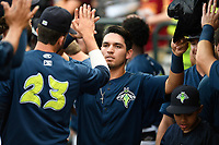 First baseman Jeremy Vasquez (20) of the Columbia Fireflies is greeted after scoring a run in a game against the Greenville Drive on Saturday, May 26, 2018, at Spirit Communications Park in Columbia, South Carolina. Columbia won, 9-2. (Tom Priddy/Four Seam Images)