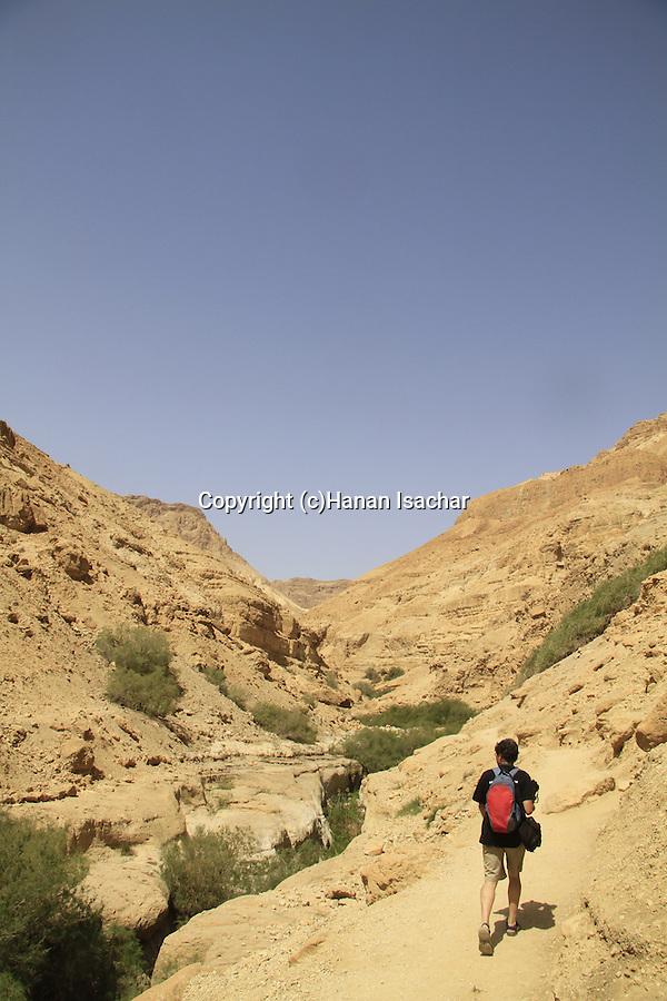 Israel, Judean desert, hiking in Nahal Arugot