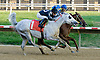 Aim Hi winning at Delaware Park on 9/13/12