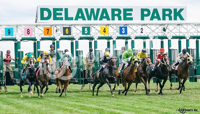 Moonlight Party winning at Delaware Park on 8/25/16