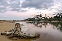 Wailua River driftwood at Kapaa beach at sunset in Kauai, Hawaii