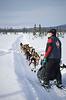 Jessie Royer runs in a scrub spruce swamp on his way to Unalakleet after leaving Kaltag on Sunday during Iditarod 2008