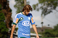 SAO PAULO, 21 DE FEVEREIRO, 2013  - TREINO PALMEIRAS - Henrique durante treino na Academia de Futebol, na tarde desta quinta-feira(21), zona oeste de capital.  A equipe se prepara para 9ª rodada do paulistão - FOTO: LOLA OLIVEIRA//BRAZIL PHOTO PRESS