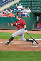 Kyle Pollock (51) of the Idaho Falls Chukars at bat against the Ogden Raptors in Pioneer League action at Lindquist Field on August 26, 2015 in Ogden, Utah. Ogden defeated the Chukars 5-1. (Stephen Smith/Four Seam Images)