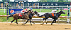 Big Joe Candy winning at Delaware Park on 8/25/16