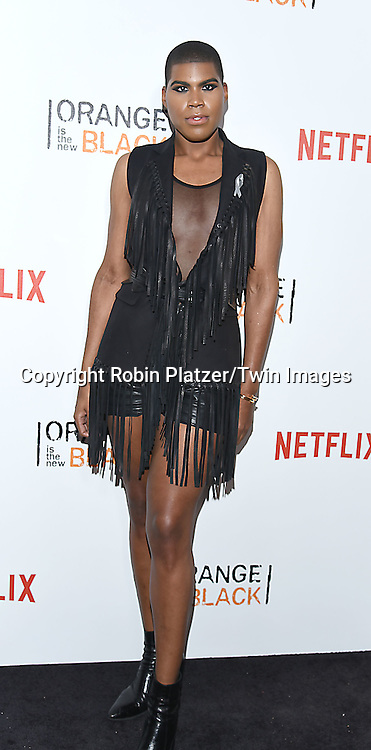 EJ Johnson attend NexFlix's &quot;Orange is the New Black&quot; 4th Season New York Premiereon June 16, 2016 at the SVA Theatre in New York City, NY, USA.<br /> <br /> photo by Robin Platzer/Twin Images<br />  <br /> phone number 212-935-0770