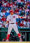 26 September 2018: Washington Nationals first baseman Ryan Zimmerman at bat against the Miami Marlins at Nationals Park in Washington, DC. The Nationals defeated the visiting Marlins 9-3, closing out Washington's 2018 home season. Mandatory Credit: Ed Wolfstein Photo *** RAW (NEF) Image File Available ***