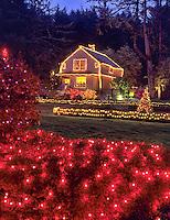 Shore Acres Gardens with Christmas lights. Oregon.