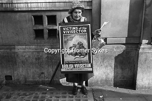 Old age lady pensioner hands out leaflets Abolish Vivisection. London 1976