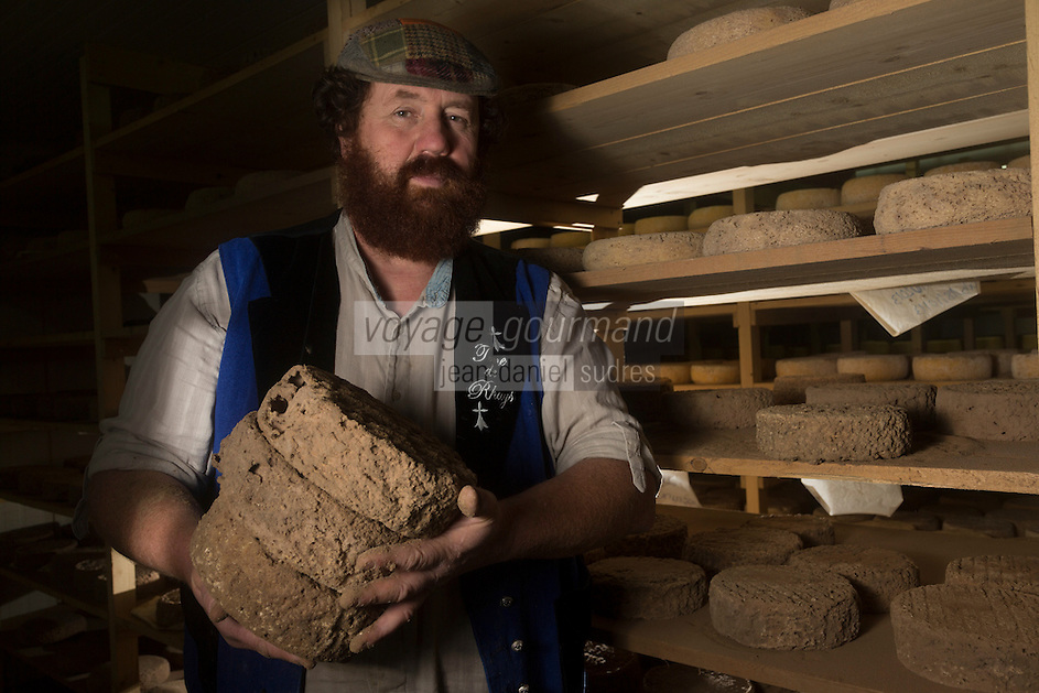 France, Morbihan (56), Sarzeau: Ferme fromagère de Sucinio, Gurvan Bourvellec y transforme le lait de petites vaches bretonnes pie noire,  Production du fromage: Tome de Rhuys , Gurvan Bourvellec dans sa cave d'affinage // France, Morbihan (56), Sarzeau Suscinio Farm cheese, Gurvan Bourvellec processing the milk of small black cows Breton pie, cheese Production: Volume Rhuys, Gurvan Bourvellec in its maturing cellar