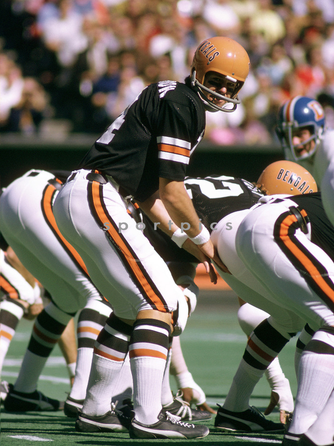Cincinnati Bengals Ken Anderson (15) during a game from his 1972 season with the Cincinnati Bengals. Ken Anderson played for 16 years, all with the Cincinnati Bengals, was a 4-time Pro Bowler and the 1981 NFL MVP.<br /> (SportPics)