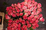 Pink roses for sale on a street in L'Isle-sur-la-Sorgue, France
