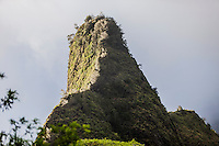 Close-up of Iao Needle, Iao Valley State Park, Wailuku, Maui