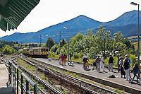 Europe/France/Languedoc-Roussillon/66/Pyrénées-Orientales/Cerdagne:Mont-Louis:  En gare, le Train jaune de Cerdagne appelé le Train Jaune ou le Canari, car les véhicules arborent les couleurs catalanes, le jaune et le rouge.
