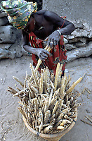 Mali. Province of Mopti. Koporo-Pen. Dogon land. 20 km away from the bottom of  the Bandiagara cliff.  Village life. Traditional loft for millet, sorghum and maze. While an old man is cleaning the inside of his loft to put in for storage the fresh harvested millet, his wife loads the old millet in a bucket.  © 2003 Didier Ruef