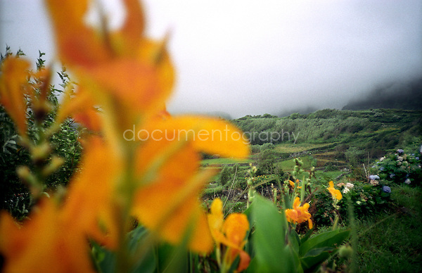 Landscape in Flores island, in Azores..copyright: Magali Corouge / Documentography