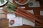 Carrots First prize winner, Butley Flower Show village fete, Butley, Suffolk, England