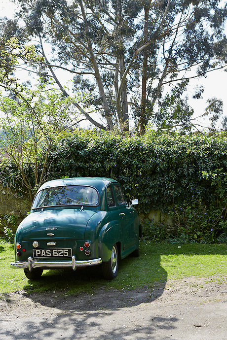 A green Austin A30 is parked in front of a hedge