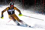 2009 NCAA Skiing Championships